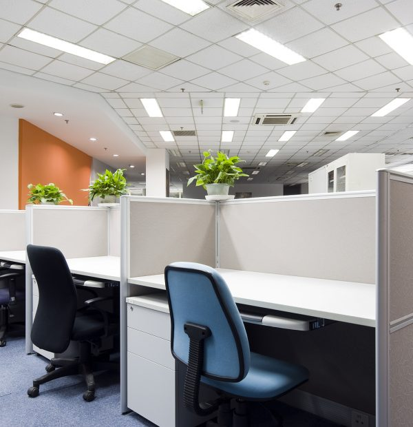 bio-clean- office-cleaning